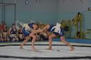 S-70_01092012_23